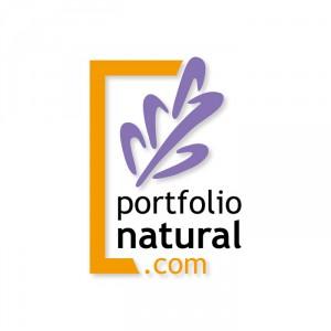 Logo PN 01 sobre blanco 700px